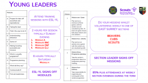 East Surrey Young Leader Training approach